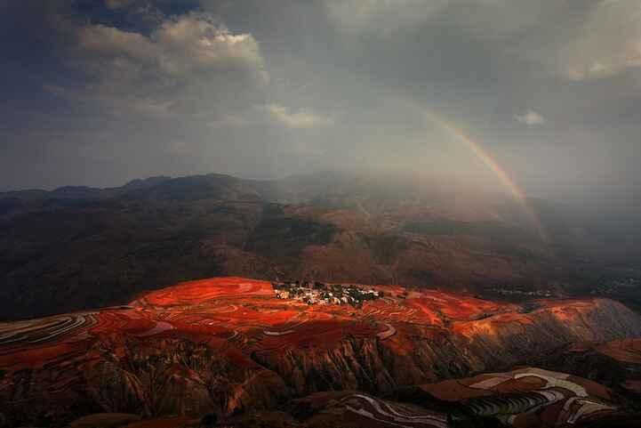 Độc đáo 15 bức ảnh trong cuộc thi ảnh của National Geographic