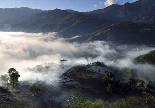 Rừng mây ở Sapa