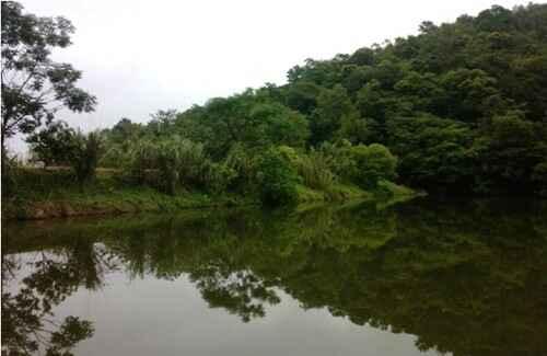 KinhNghiemDuLich.org   Thiên đường nơi chân núi Ba Vì