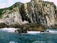 Vĩnh Hy - biển và rừng